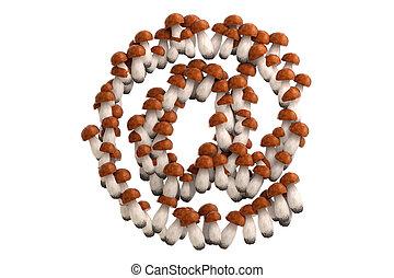 Boletus mushroom symbol on white background.