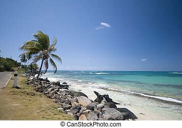 seaside malecon road sallie peachie beach corn island...