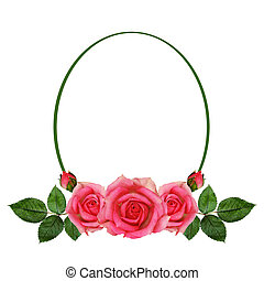 Rose flowers arrangement and frame isolated on white