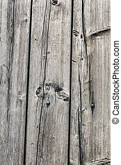 Old Knotted Rotten Floorboards - Photograph of old,...