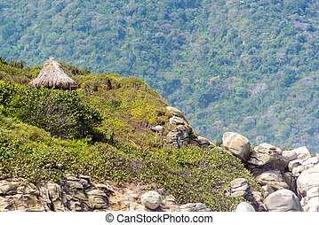 Jungle Hut - Small hut on a hillside surrounded by jungle in...