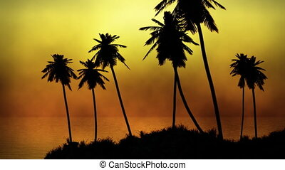 1064 Island Sunset Palms Fog - Nice tropical island sunset...