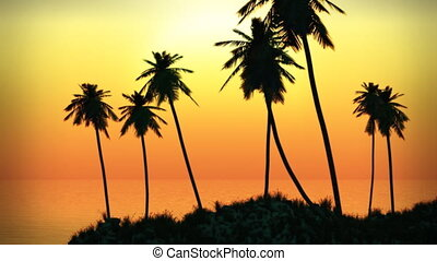 (1063) Tropical Island Palm Sunset