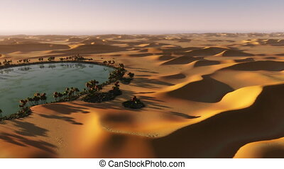 (1090) Sahara Desert Sphinx Sunset Oasis - Desert oasis in...