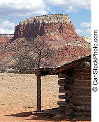 View From the Stoop - Log home living in the desert...