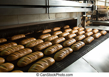 Hot baked breads on a line - Fresh hot baked bread loafs on...