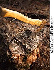 iron axe stuck in wood log - Photo of iron axe stuck in wood...