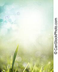 Spring - Grass and sky spring scene