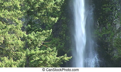 Latourell Waterfall - Latourell fall near Multnomah Falls,...