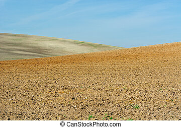 Plowed Fields - Plowed Sloping Hills of Spain in the Autumn