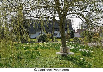 Cottage Garden in Spring - A UK cottage garden in spring...