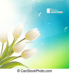 Spring card with white tulips
