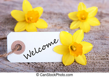 Welcome Sign - A Banner with Welcome and Yellow Narcissus in...