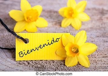 Bienvenido Tag - Yellow Tag with the Spanish Word Bienvenido...
