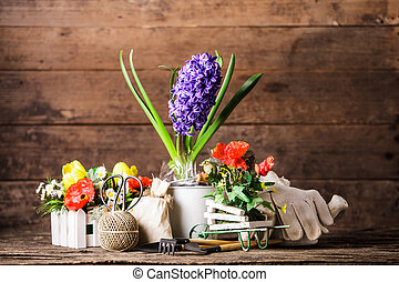 Garden tools for flowers over wooden background