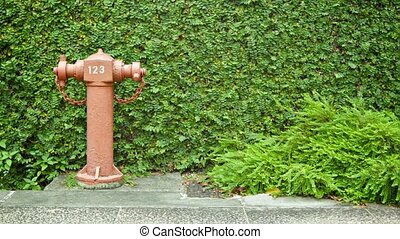 Fire hydrant on a city street. Singapore