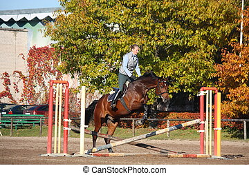 Young woman jumping barrier on brown horse in autumn - Young...