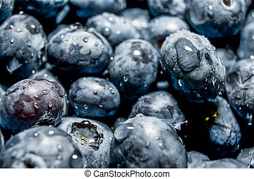 Fresh Blue Berries