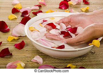 Woman hands and rose petals