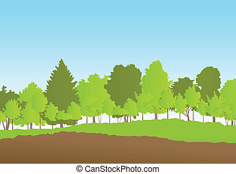 Forest in summer vector background landscape