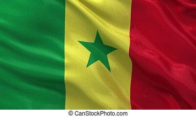 Flag of Senegal - seamless loop