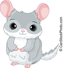 Chinchilla - Illustration of lovely grey chinchilla