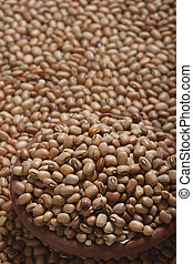 Soyabean - The soybean (U.S.) or soya bean (UK) (Glycine...