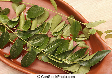 Curry Leaves - The leaves are highly valued as seasoning in...