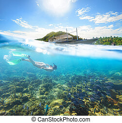 Beautiful underwater world on a sunny day at Apo Island...