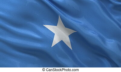 Flag of Somalia - seamless loop - Flag of Somalia gently...