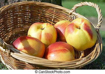 Nectarine in a basket