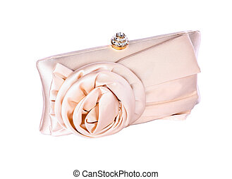 The women clutch bag - Elegant women clutch bag on white...