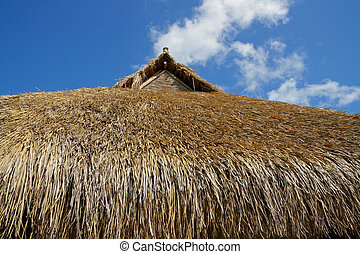 Thatched roof - Traditional African thatched roof against a...