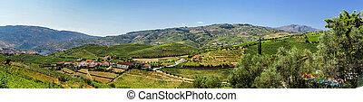Douro hills panoramic view