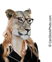 Amusing Lioness Secretary Concept - Cute lioness wearing...