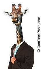 Funny Giraffe Man Concept - Giraffe with long neck and...