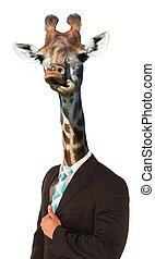 rigolote, girafe,  concept, homme