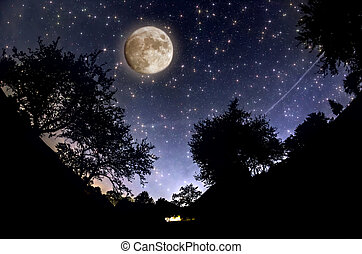 Starry Sky -  Starry Sky and full moon