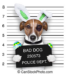 easter mugshot dog - easter mugshot bad dog with broken...