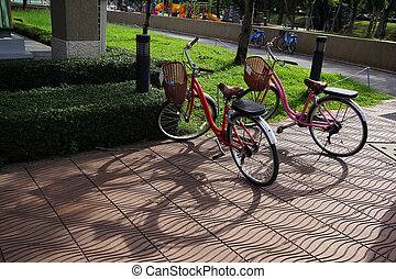 Bicycle parking in the park