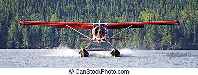 krzak, pilot, lądowanie, samolot