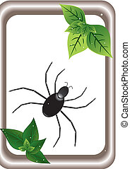 spider and spring sheet - illustration with frame and spider...