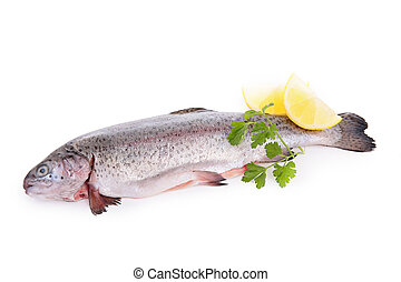 raw fish isolated