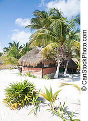 Bungalow on the beach bewtween the palm tree