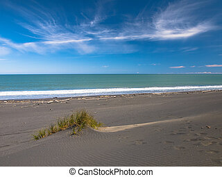 Dune in Black Sand Beach near New Plymouth, New Zealand -...