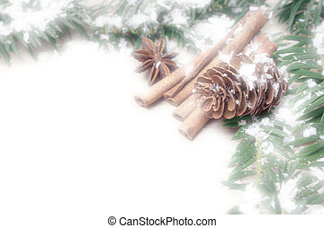 winter time - Cinnamon sticks and pine cones with snow
