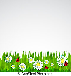 Spring background with grass chamomile?