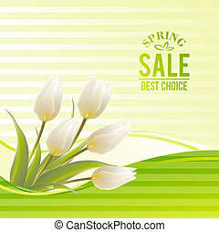 White tulip spring flowers bouquet for sale. Vector illustration.