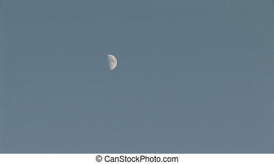 Daytime Moon - Half moon against a blue sky, zoom in