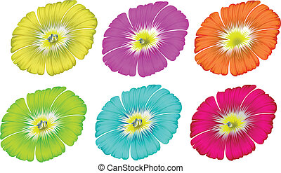 Colourful flowers - Illustration of the colourful flowers on...